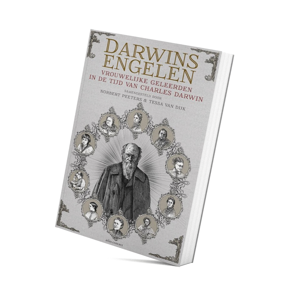 aMockup of book about Darwin's Angels
